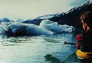 Kayaking in Glacier Bay near icebergs